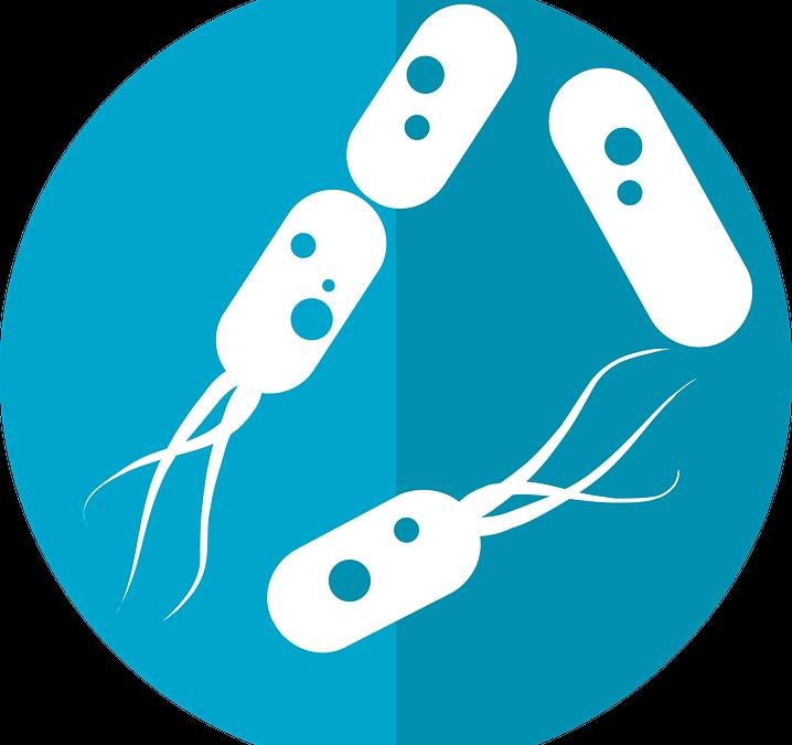 Probiotics, Prebiotics, & Oral Health