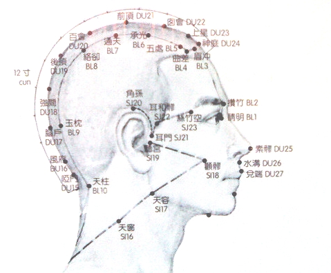 acupuncture diagram of head