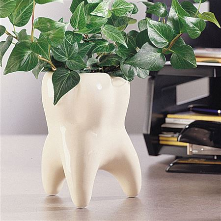 molar vase