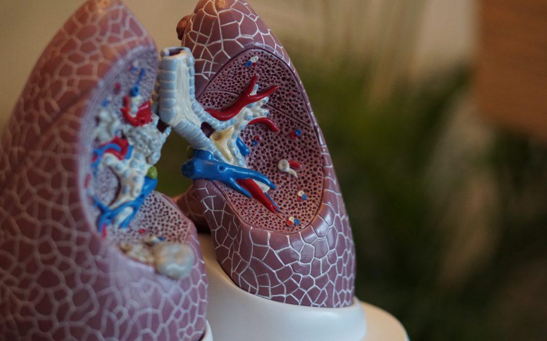 The Link Between Gum Disease, Lung Disease, & Death
