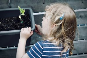 child looking at seedling